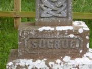 Shots of the Butty Sugrue grave before they put the gravestone up this year. It is under the tree.