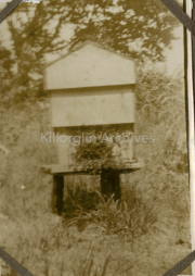 Bansha Beehives