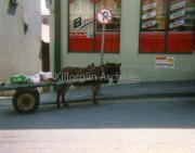 Donkey & Cart Shoping.