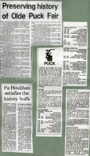 Preserving History Of Olde Puck Fair, Pa Houlihan Satisfies The History Buffs, Puck