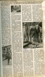 1995 Newspaper article - Wild Flower of the Laune